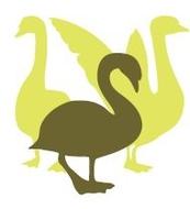 Logo van Stichting Vogelklas Karel Schot